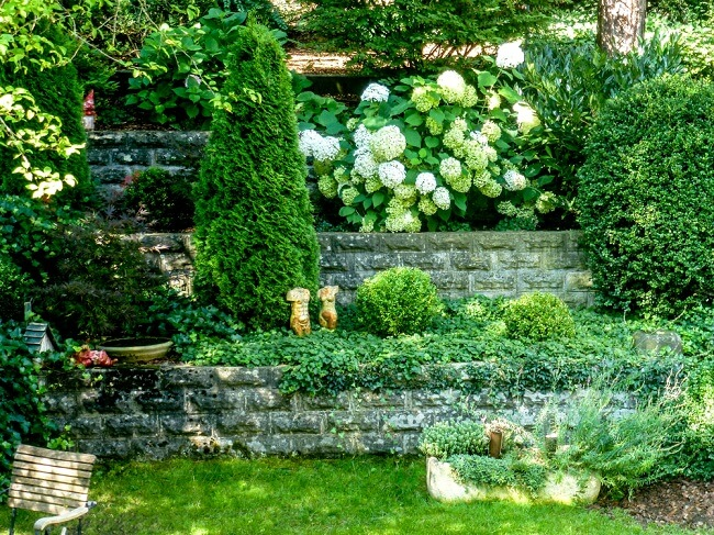 Veel groen in kleine tuin