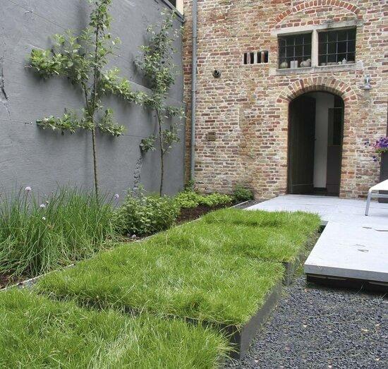 kleine tuin met veel groen