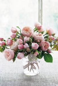 Pioenrozen-mijn-favoriete-bloemen