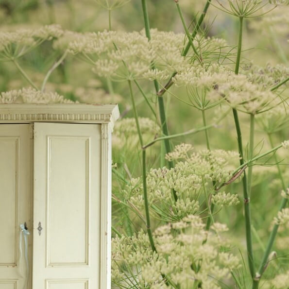Fotobehang Natuur Bloemen