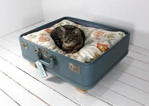 koffer poezenmand