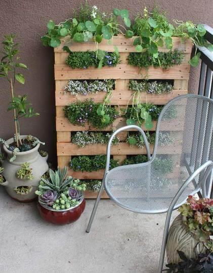 Verticale tuin voor kruiden of bloemen met pallet