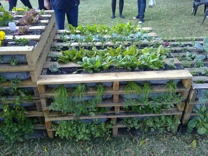 Mooie tuin, opgebouwd van afgedankte pallets