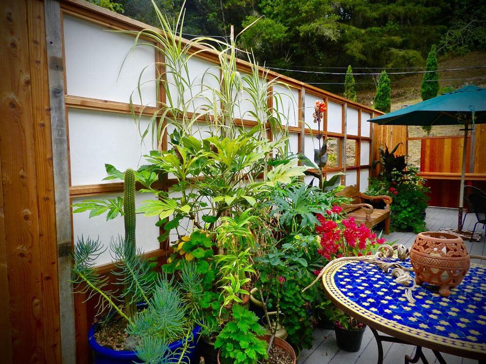 Oosterse planten