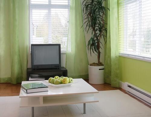 Groen retro behang