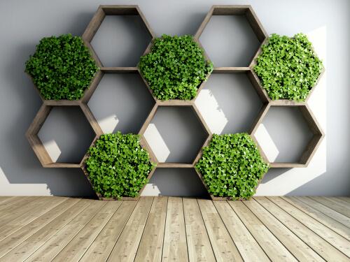 Hexagon vorm met plantjes