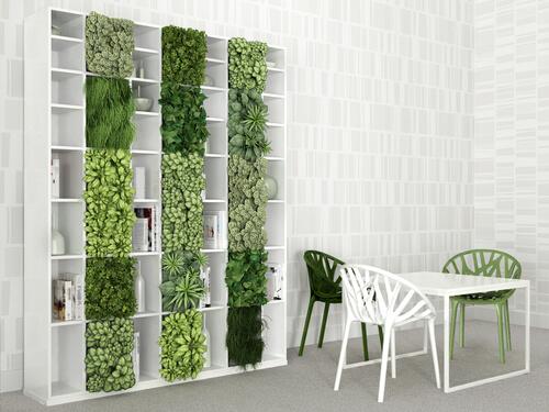 Verticale tuin in de boekenkast