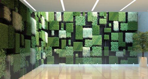 Wand met vakken verticale tuin