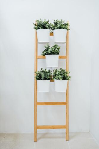 Plantenrekje voor verticaal tuintje in de badkamer