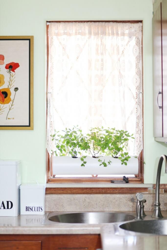 Plantenbuis voor binnen - abeautifulmess.com