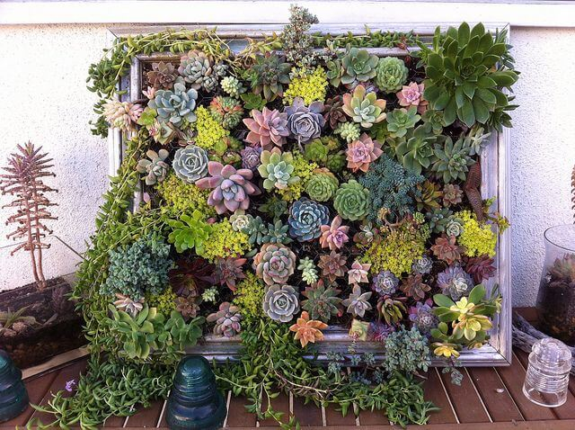 Verticale Tuin Maken : Verticaal tuinieren diy ideeën ik woon fijn