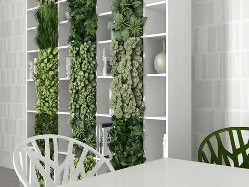 Boekenkast met planten voor verticale tuin in huis