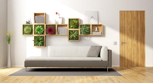 Plantjes in de kastjes aan de muur