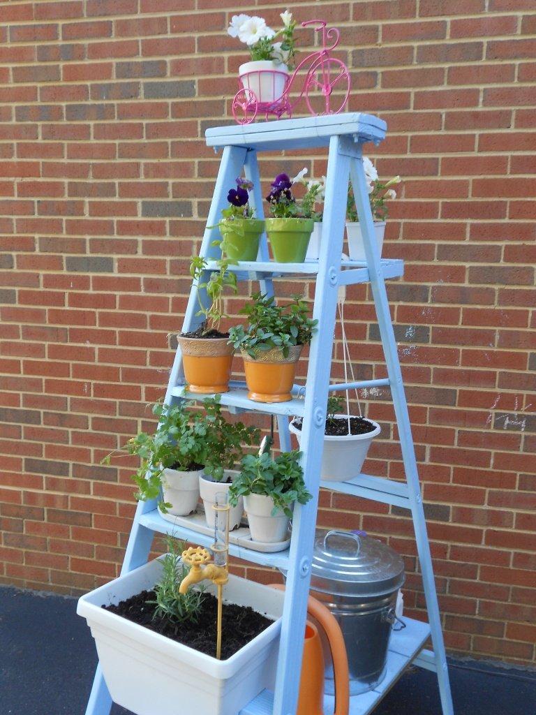 Ladder - smalltownrambler.com