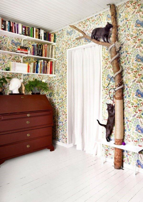 Interieur kattenliefhebbers