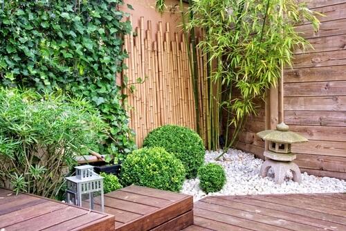 Japanse tuin met bamboe