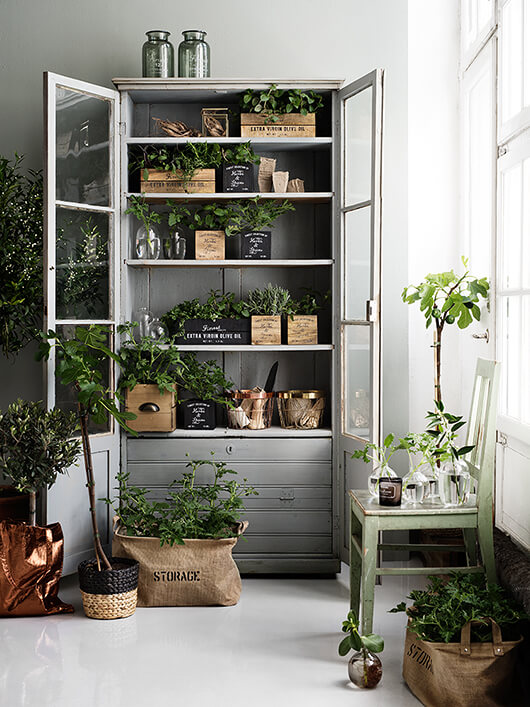 Kast vol planten - trendenser.se