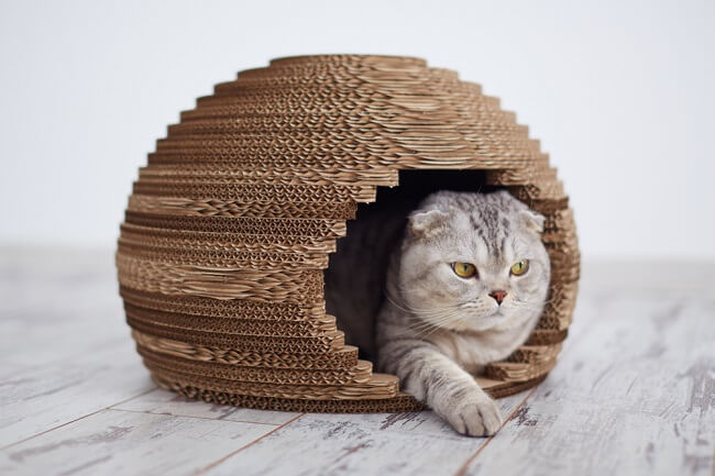 Stijlvol kattenhuisje