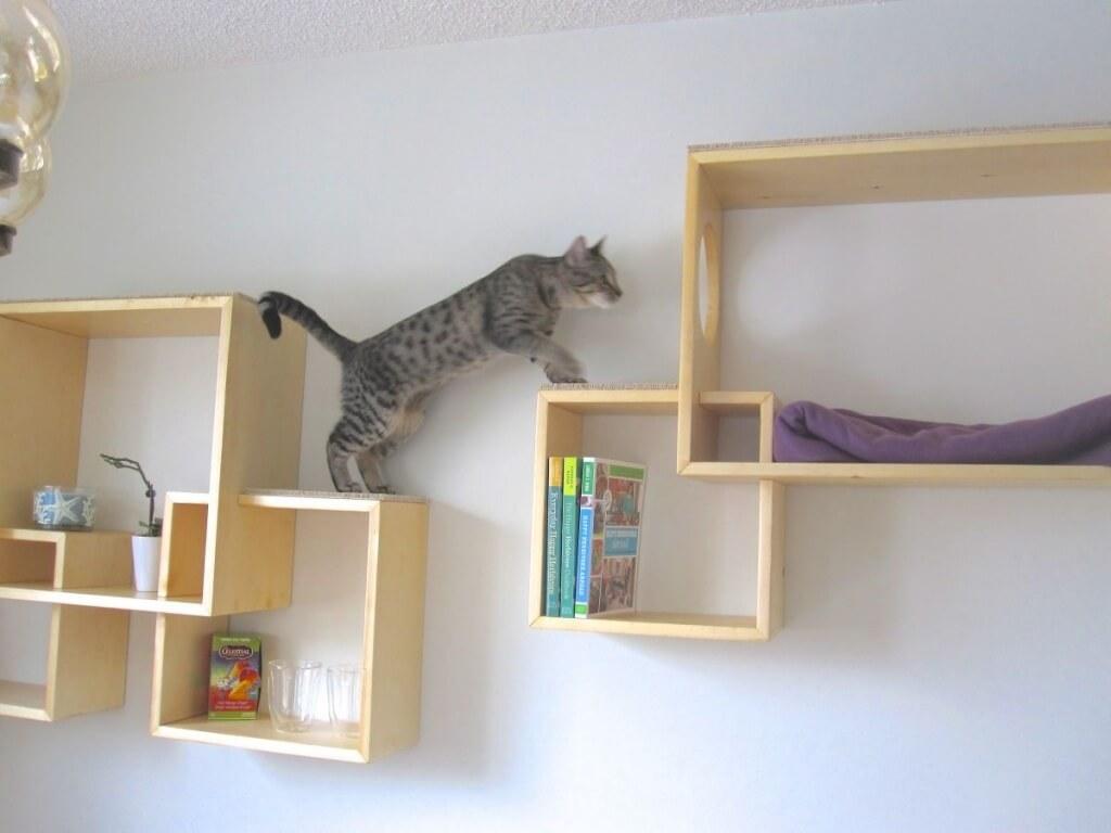 interieur aanpassen kat