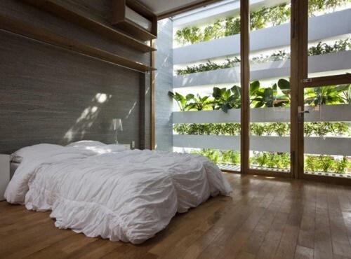 Planten in de feng shui slaapkamer
