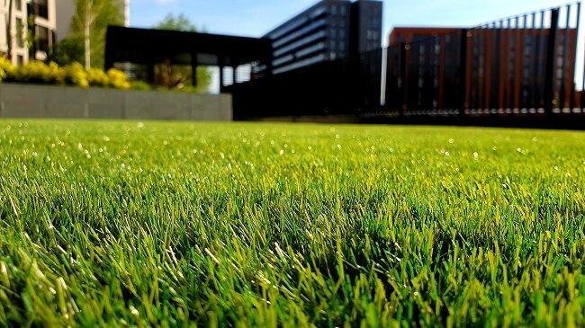 Modern grasveld