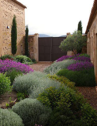 Typische lage beplanting voor mediterrane tuin