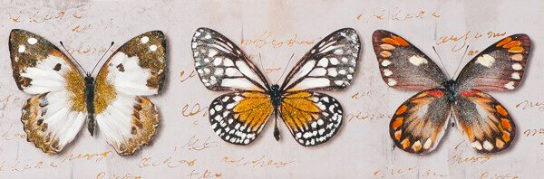 Vlinder kunstwerk voor kinderkamer