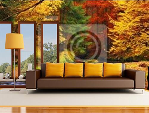 Herfstachtig behang kleurrijk bos