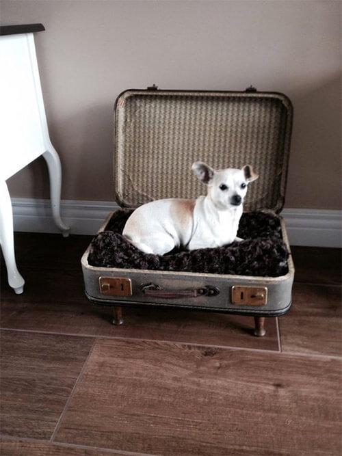 koffers hergebruiken hondenmand