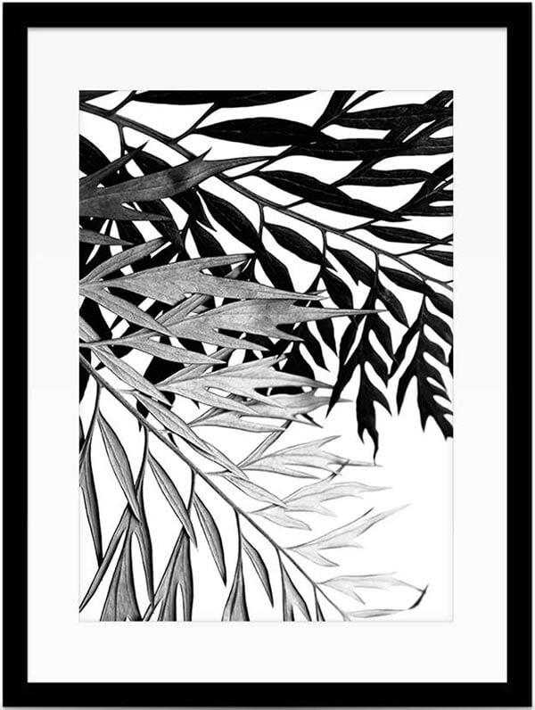 Botantische wanddecoratie zwart wit poster