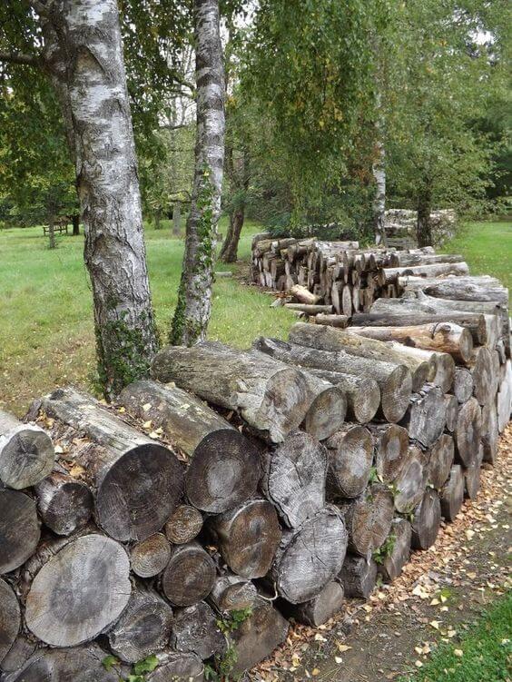 Natuurlijke tuinafscheiding de mogelijkheden op een rijtje ik woon fijn - Hek begroeide ...
