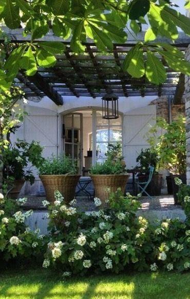 Romantisch terras met groene planten