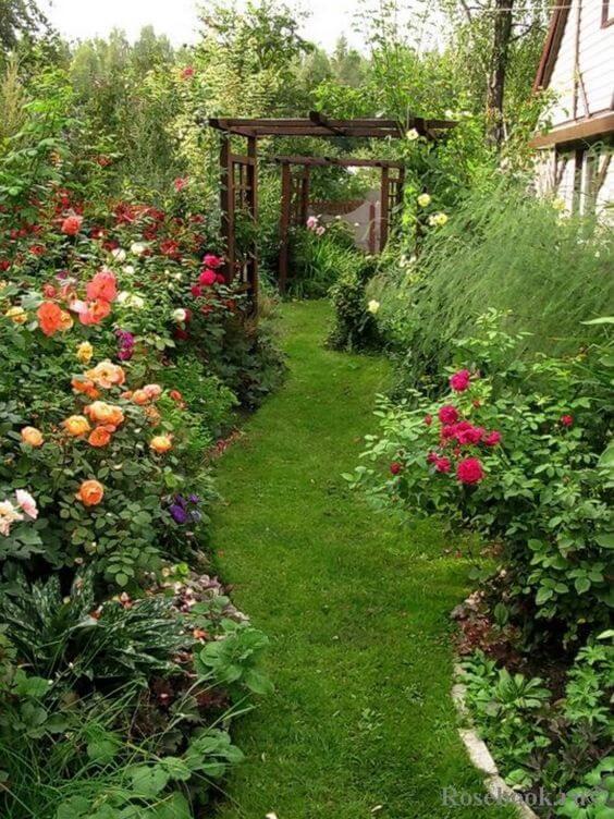 Tuinpad met prachtige bloemen