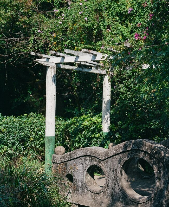 Begroeide pagode