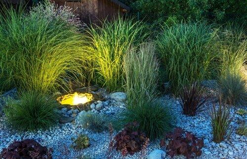 Indirecte verlichting voor planten