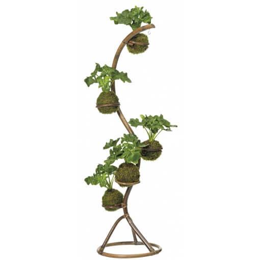 plantenstandaard intratuin