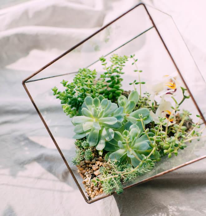 De vierkante glazen stolp geliefd item onder interieurliefhebbers ik woon fijn - Woon outs vierkante ...