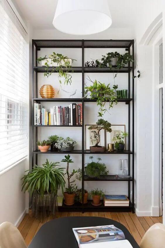 open kast planten