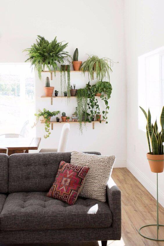 planken groene planten