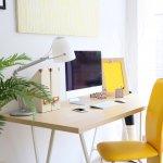 Inspiratie: Waarom jij ook een groen kantoor wilt
