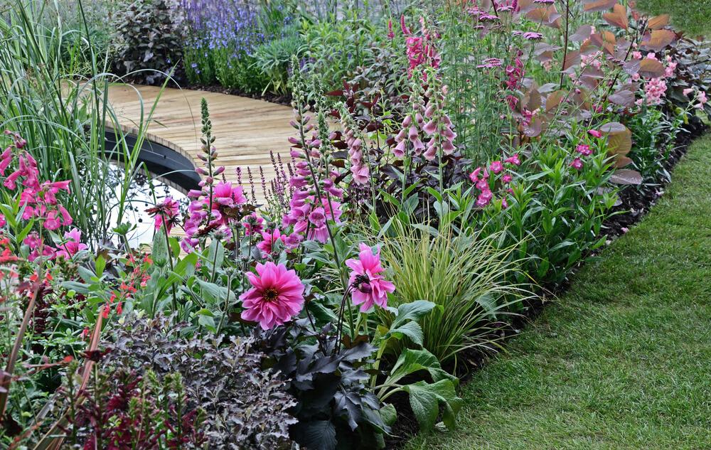 border tuin
