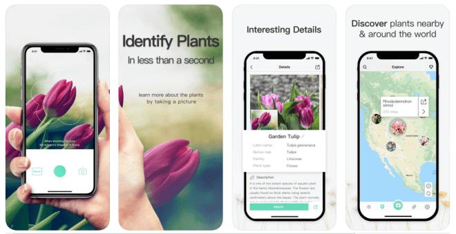 Picturethis shazam voor planten