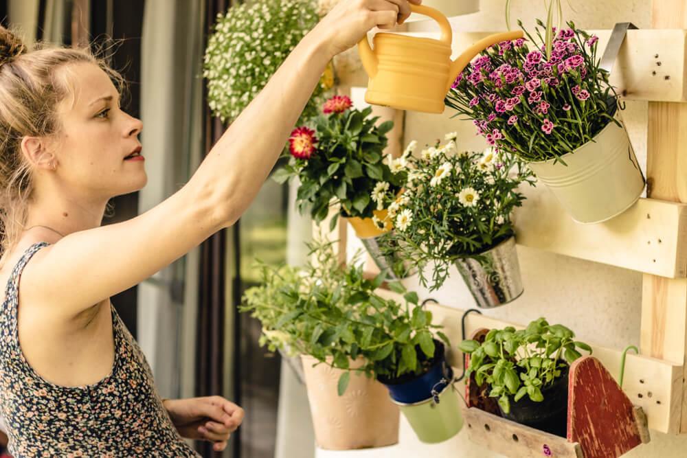 balkon planten verzorgen