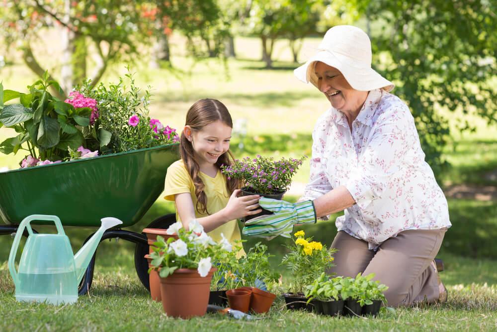 tuinieren last van rug tips