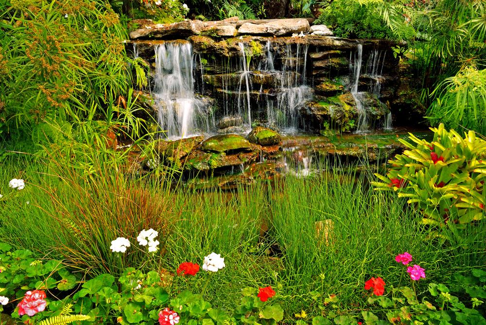Natuurlijke waterval in tuin