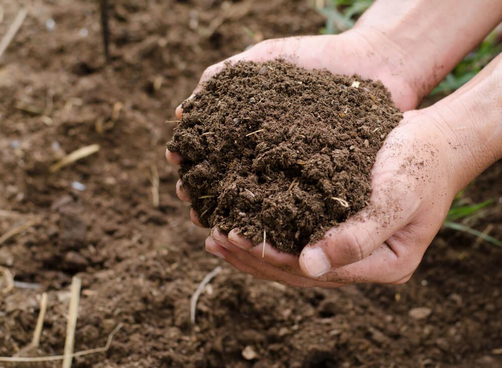 Hoe maak je compost