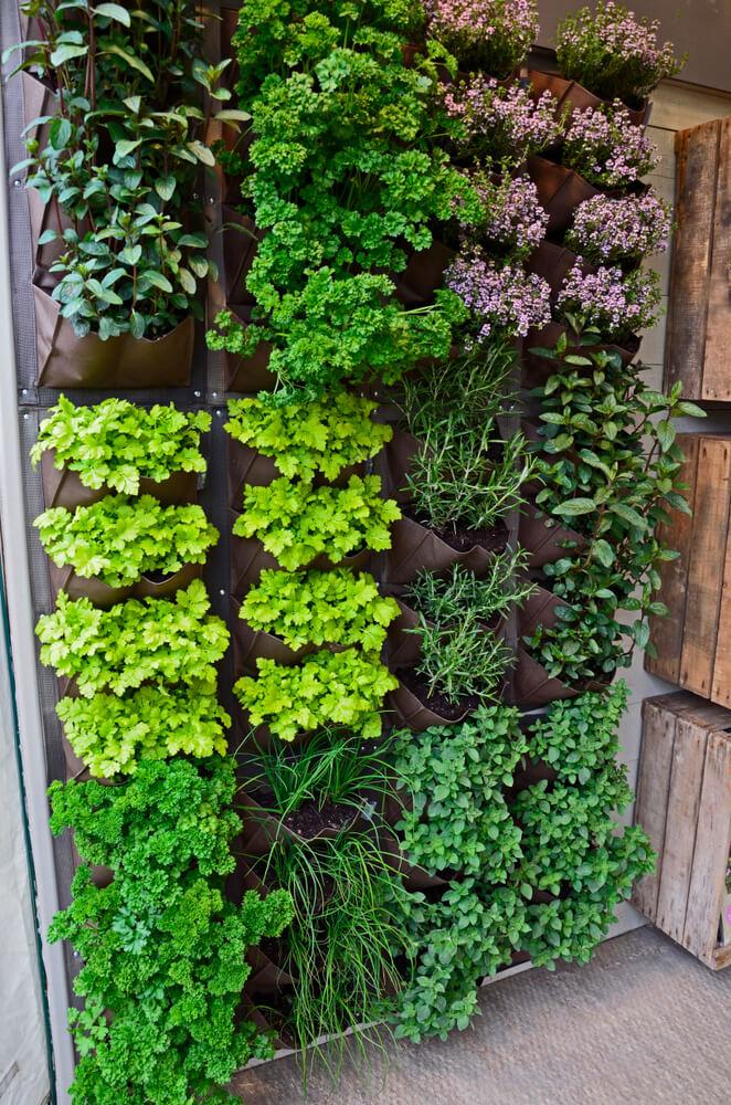 Kleine verticale tuin met plantenzakken