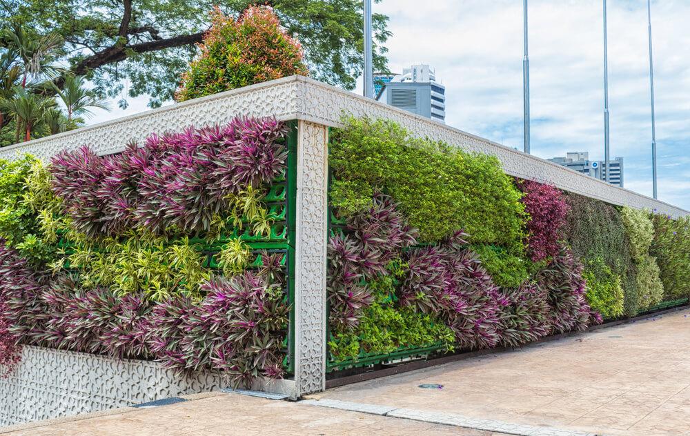 Lange verticale tuin