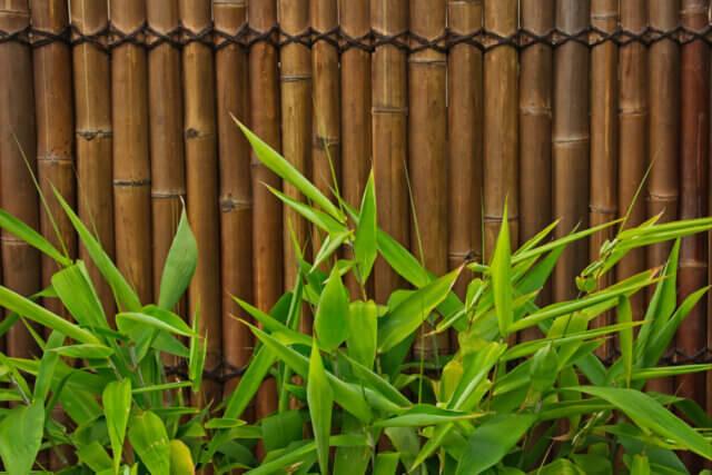 Mooi en tijdloos: bamboe omheining in de tuin