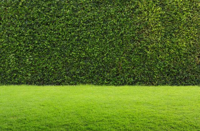 Stijlvolle oplossingen voor een omheining in de tuin